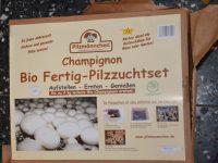 Frische Pilze ohne Suchen dank Pilzmännchen