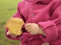 DIY: Vom Blätter sammeln und Laterne basteln