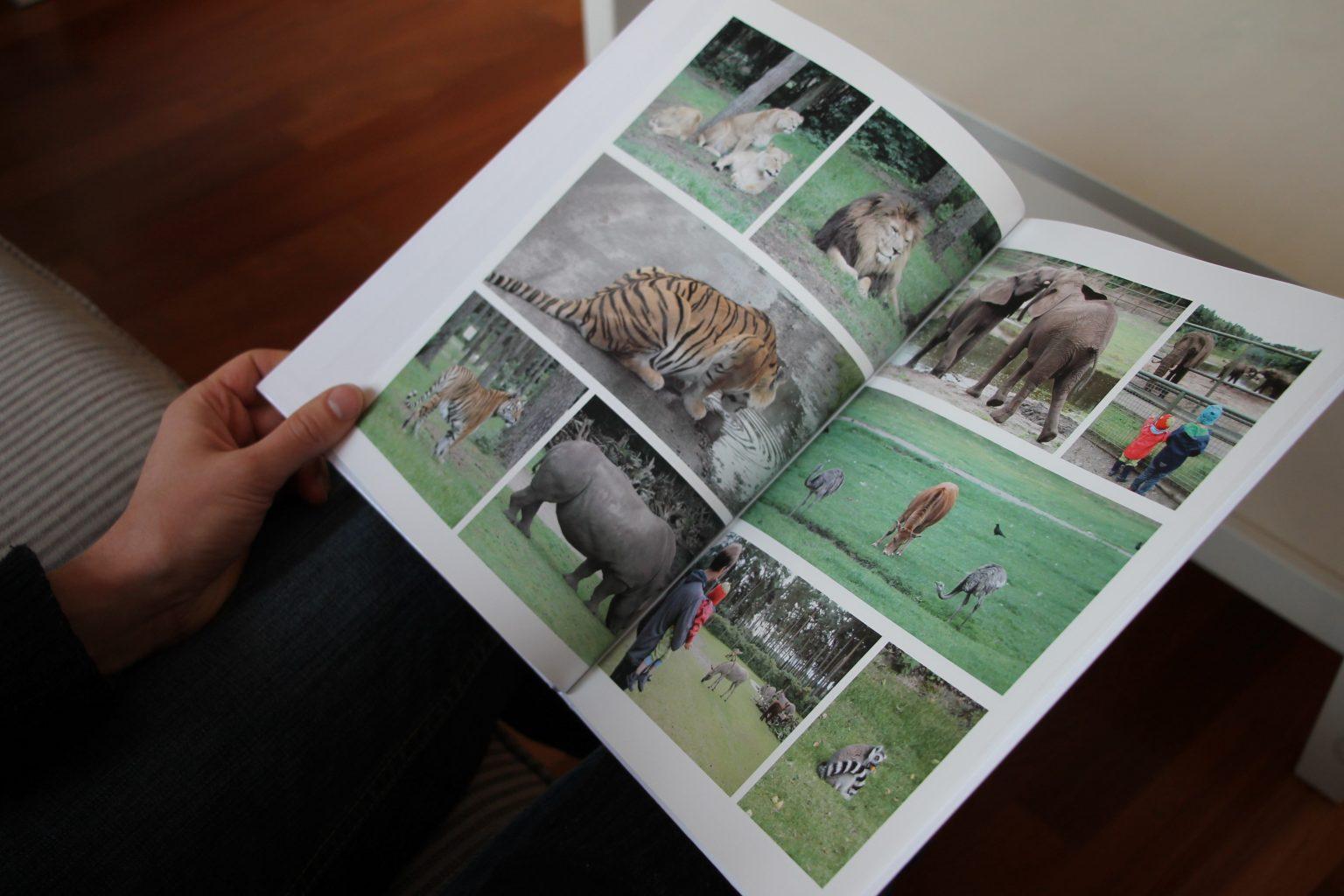 eColorland Fotobuch