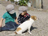 Der Ferienhof Wichtelweide auf Fehmarn: Ein Paradies für Eltern und Kinder