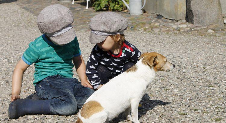 Kinder streicheln Hund auf dem Ferienhof Wichtelweide auf der Insel Fehmarn
