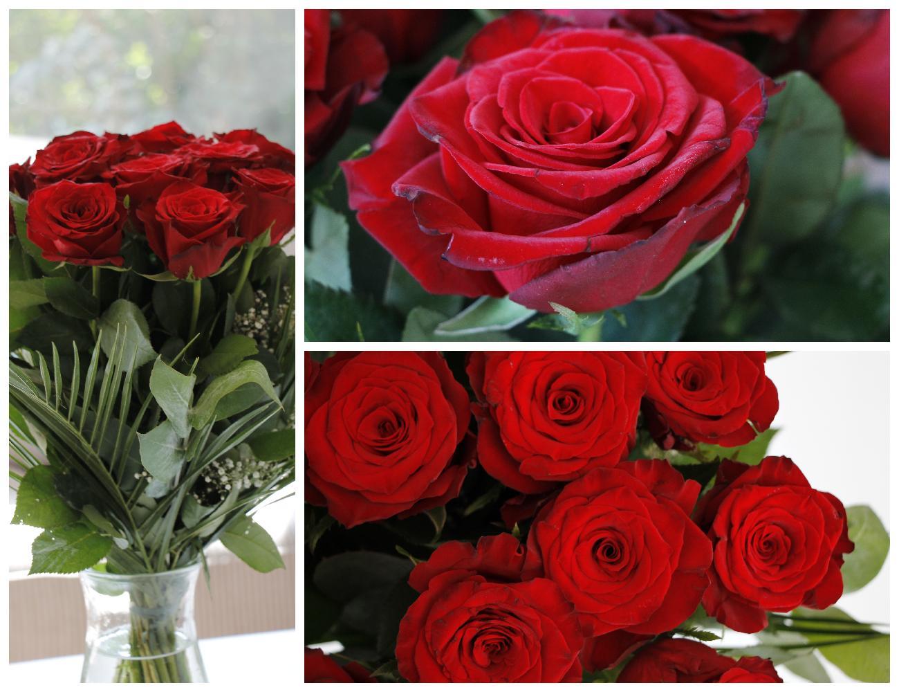 Online-Blumenversand FloraQueen