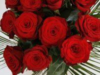 Blumen online verschicken mit FloraQueen