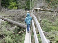 Die Kinderinvaliditätsversicherung JuniorSchutz Plus der Basler Versicherungen im Fokus