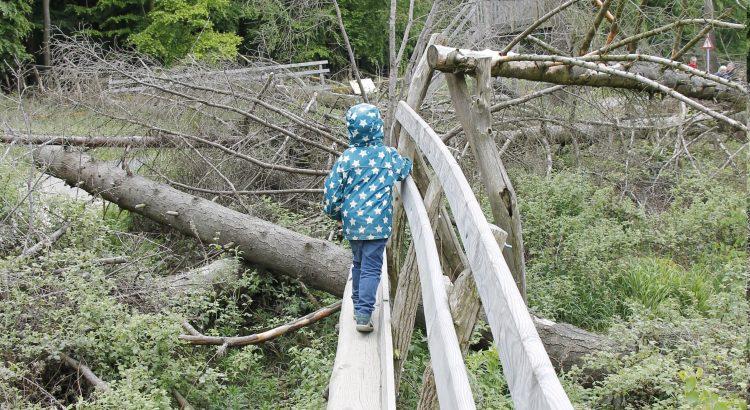 Basler Versicherungen Kinderinvaliditätsversicherung