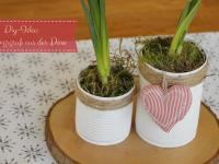 DIY-Idee: Selbstgemachte Blumentöpfe aus Dosen