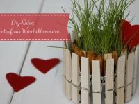 Frühlingshafte DIY-Idee: Blumentopf aus Wäscheklammern