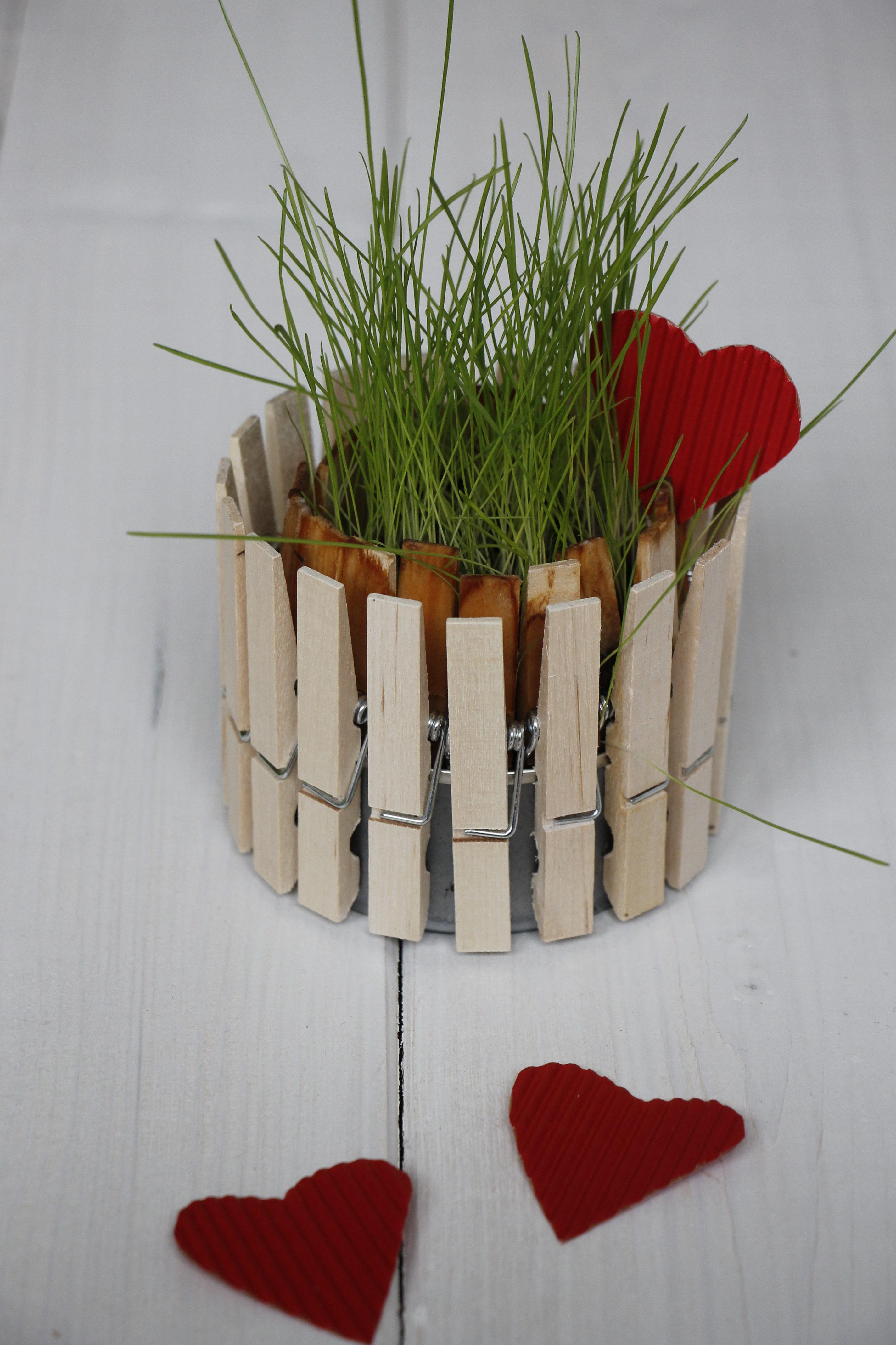 Fruhlingshafte Diy Idee Blumentopf Aus Wascheklammern Lavendelblog