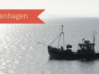 Dorfhotel Boltenhagen: Entspannter Familienurlaub mit Meerblick