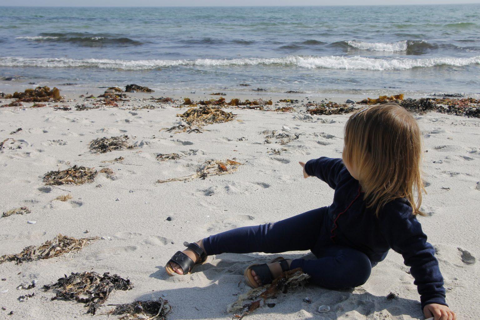 Dänemark Ebeltoft Strand