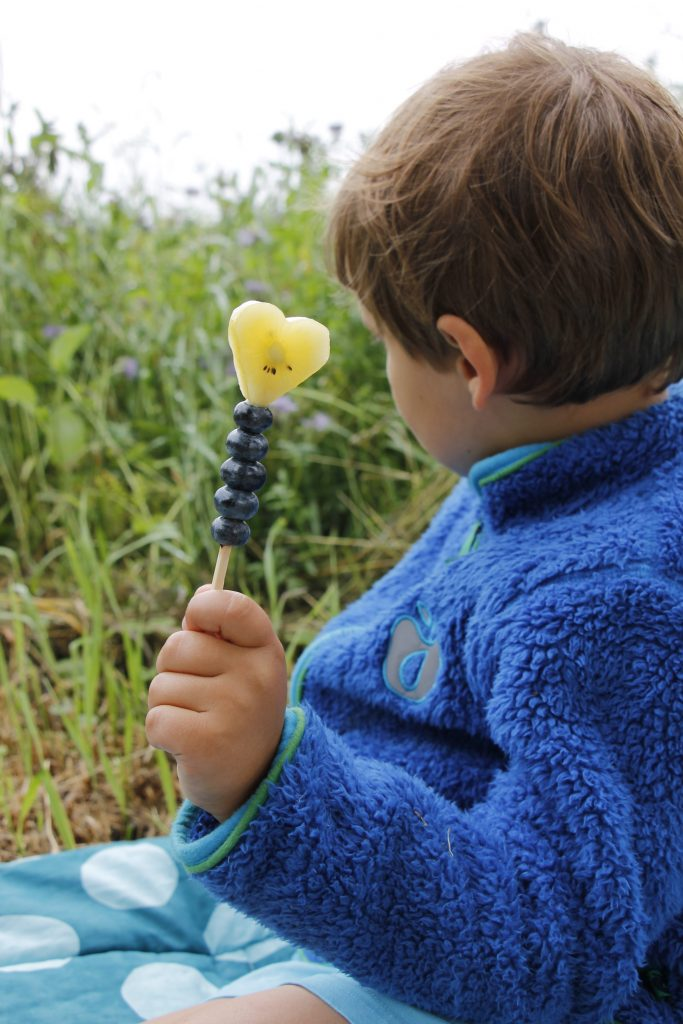 Obstsnack Kinder Idee Zespri