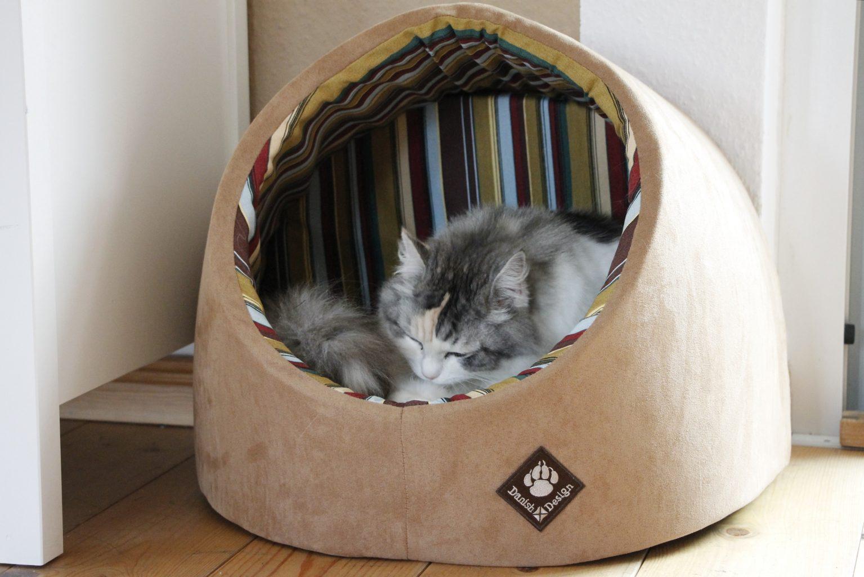 tierzubeh r omlet test lavendelblog. Black Bedroom Furniture Sets. Home Design Ideas