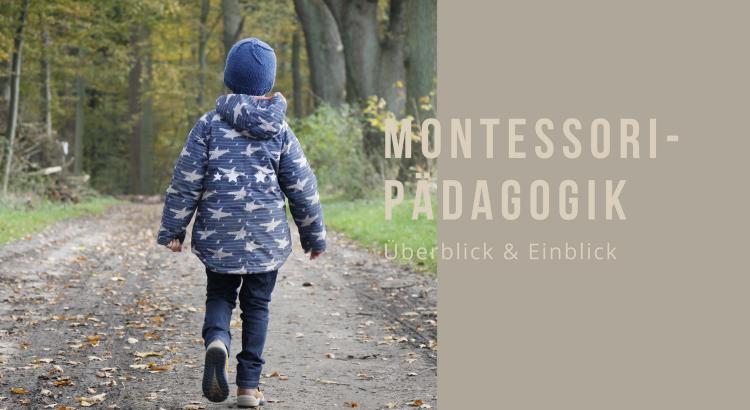 Montessori-Pädagogik Überblick