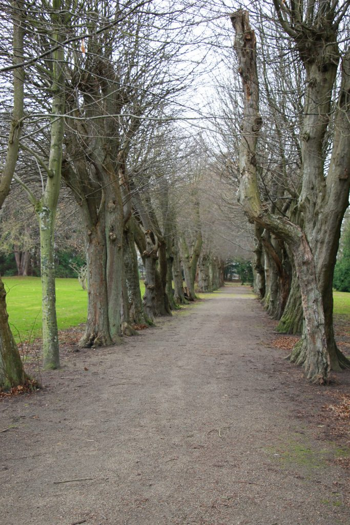 Fuglsang Park