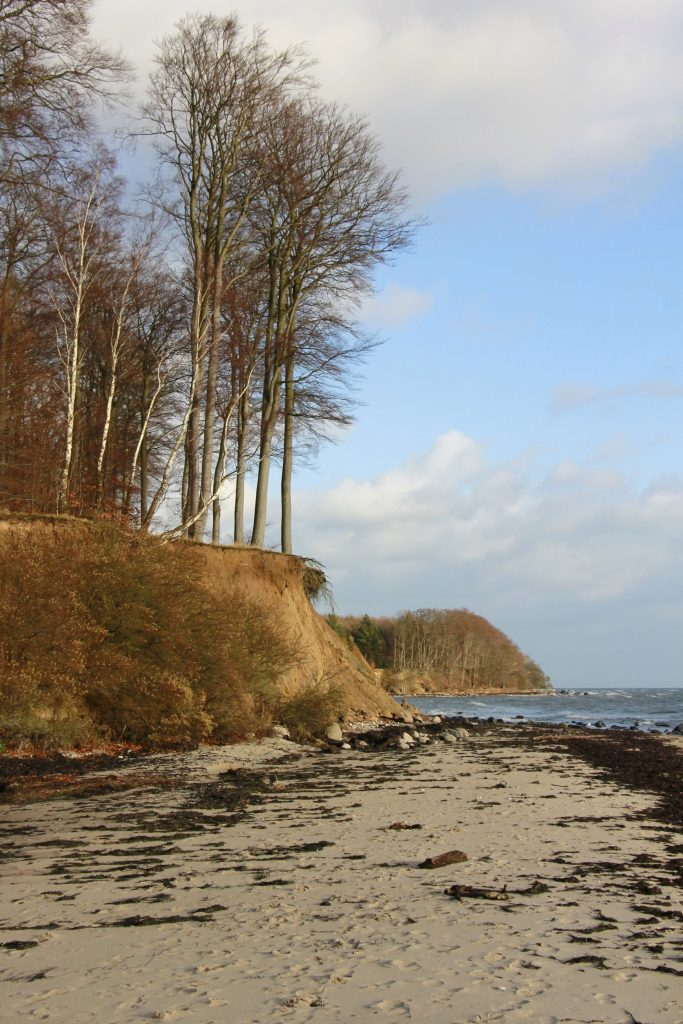 Hesnæes Steilküste