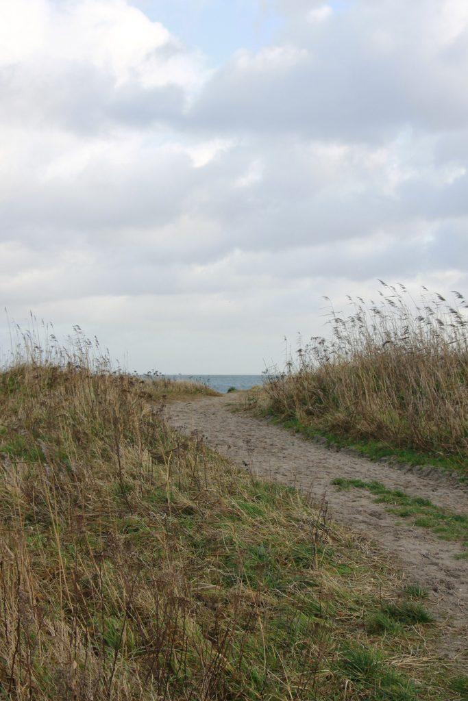 Hesnæs Strand