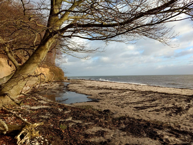 Steilküste dänische Ostsee
