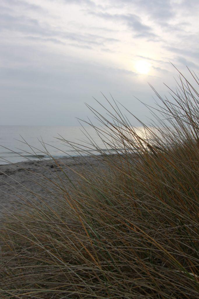 bester Strand auf Falster