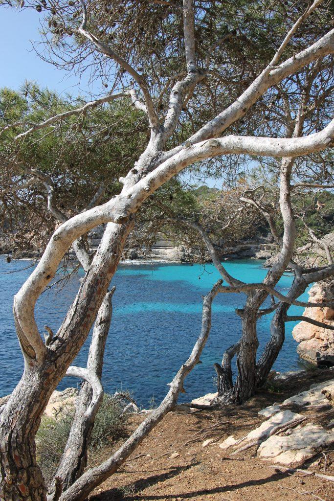 Wanderroute Mallorca Tipps