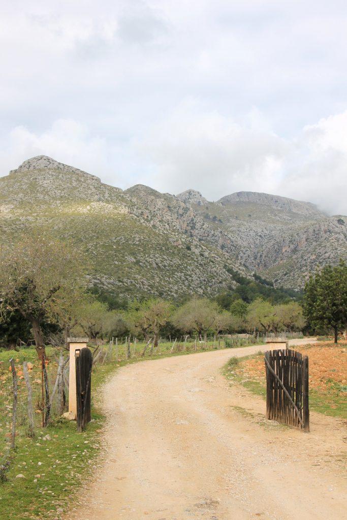 Wanderungen mit Kindern Mallorca Tipps