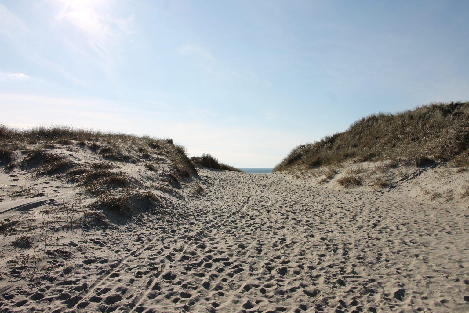 Strand Bjerregard