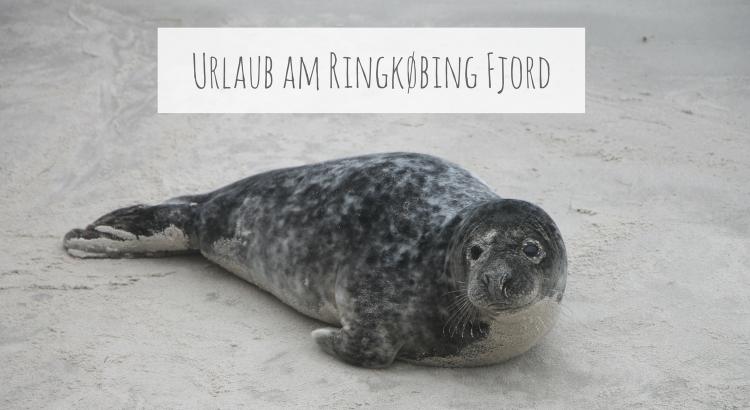 Urlaub Ringkøbing Fjord Tipps