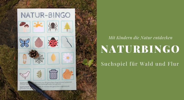 Natur-Bingo Spiel