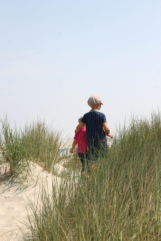 Hoek van Holland Strand Dünen