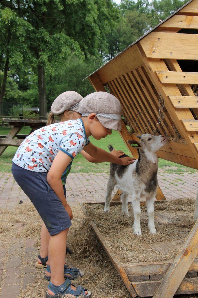 KinderboerderijFreriks Winterswijk
