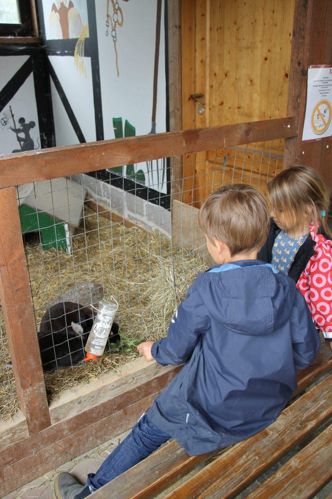 Familotel Ebbinghof Kinderprogramm