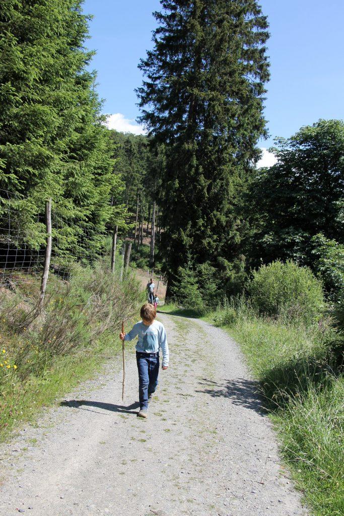 Wandern im Sauerland Tipps