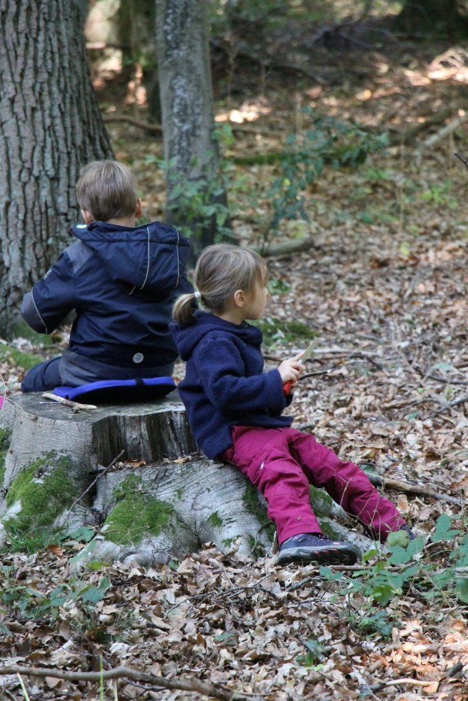 Montessori Waldtag