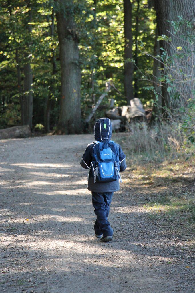 Waldtag Montessori Schule