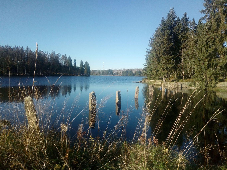 Familienurlaub Harz BestFewo