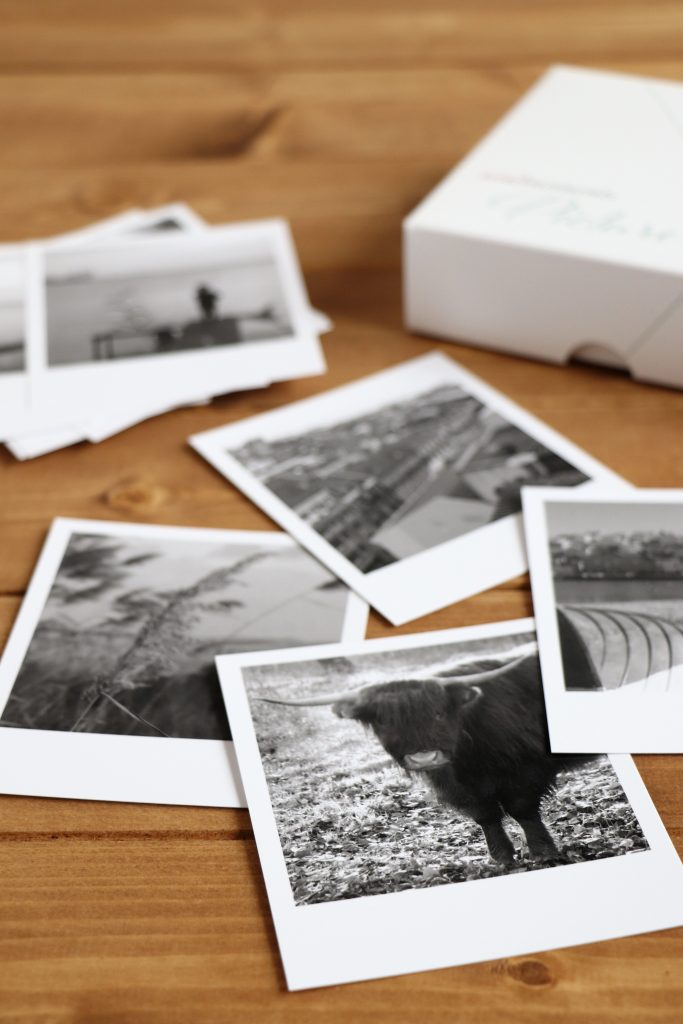 Fotos in Schwarz-Weiß-Fotos umwandeln