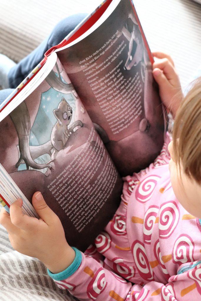 Kinderbuch Empfehlung Grundschulkinder Boie