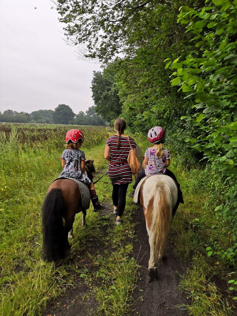 Pferdegeburtstag Ideen
