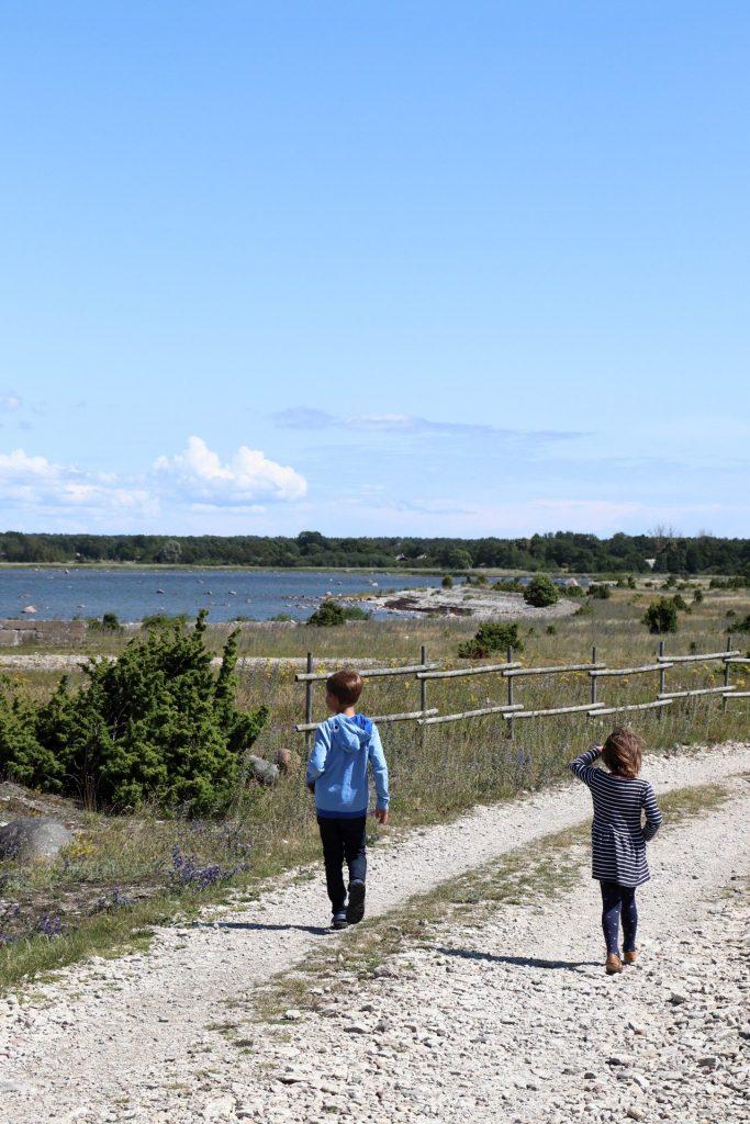 Saaremaa Highlights