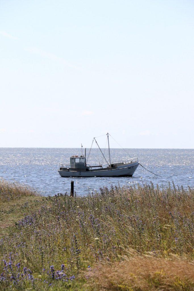Saaremaa Urlaub