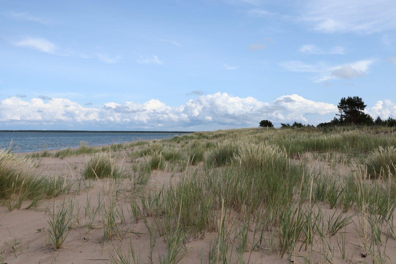 Sandstrand Saaremaa Vilsandi
