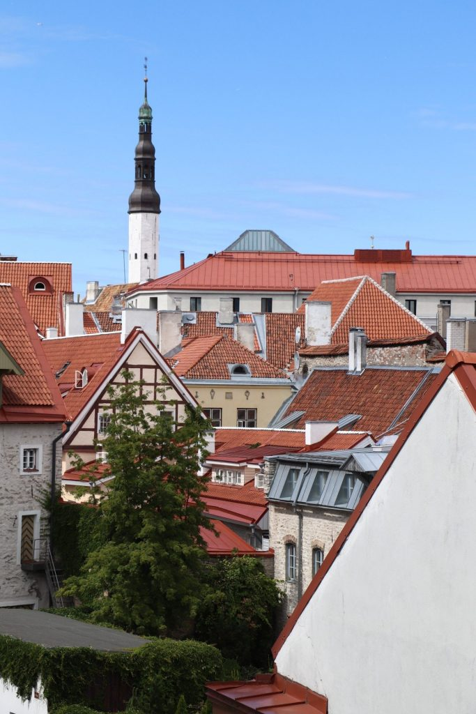 Tallinn Altstadt entdecken