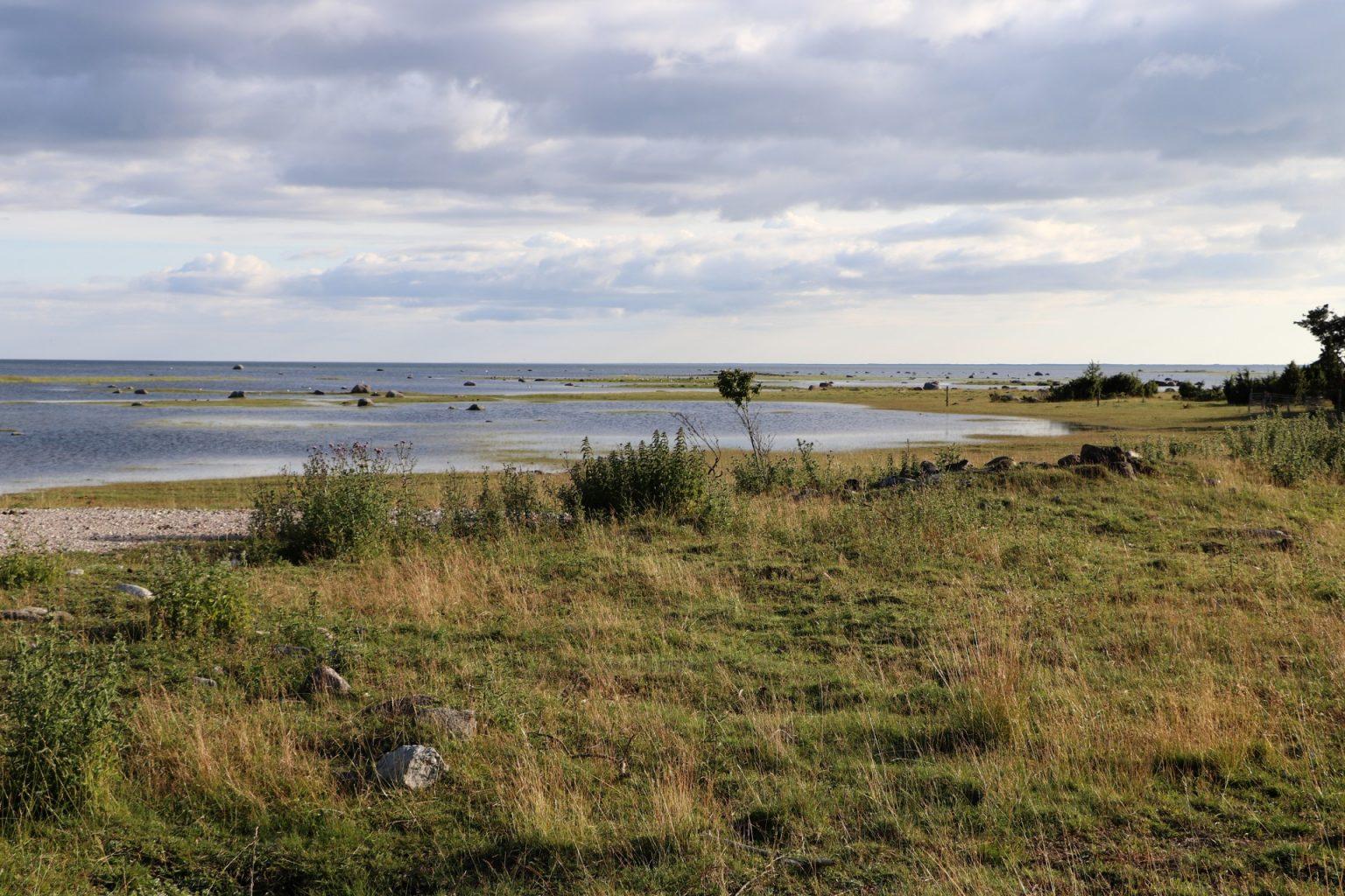 Urlaub Saaremaa Natur