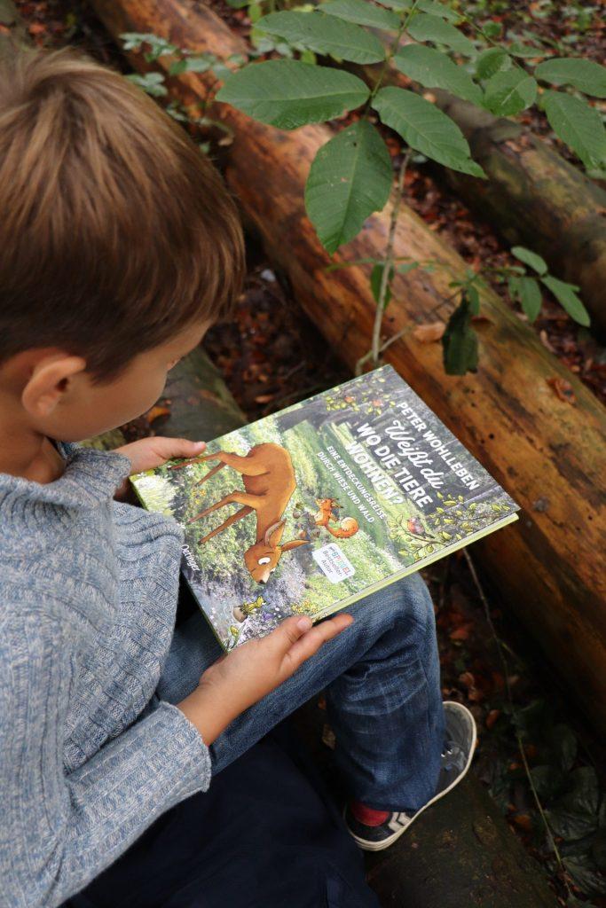 Kinderbuch Peter Wohlleben Oetinger