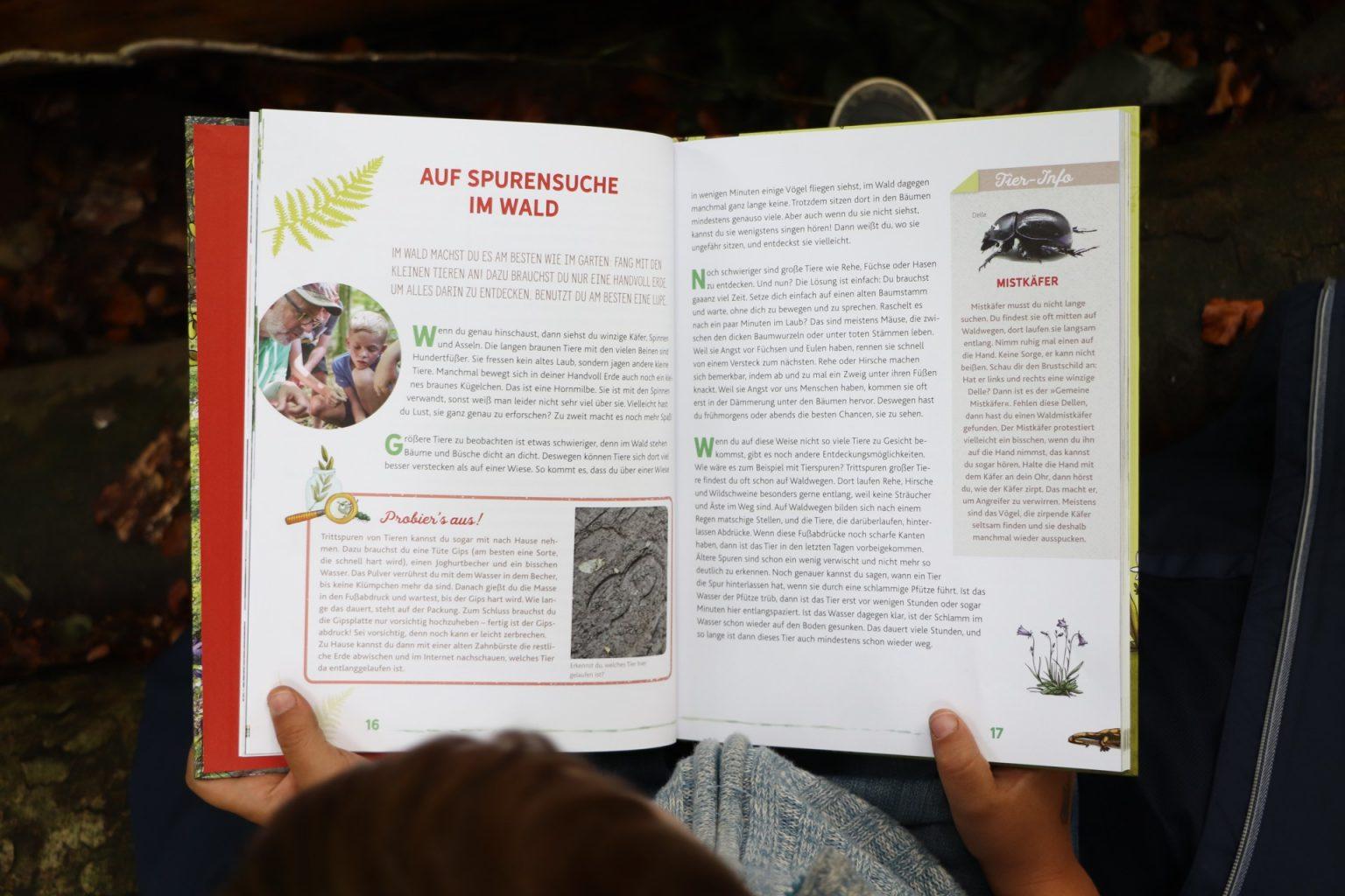Sachbuch Tiere Kinder