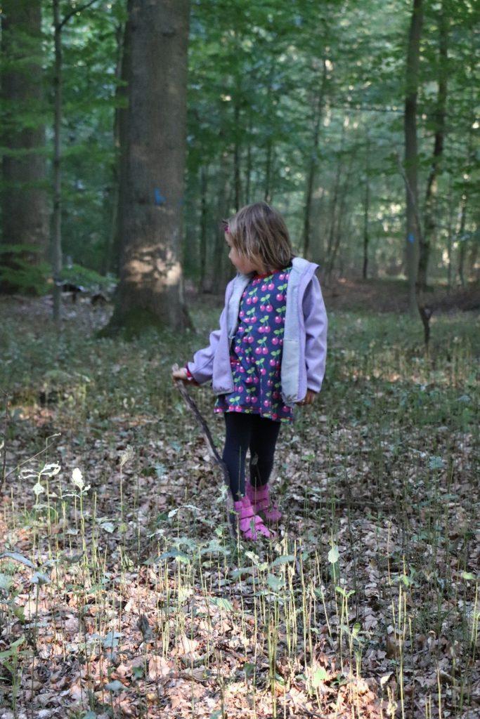 Wald entdecken mit Kindern