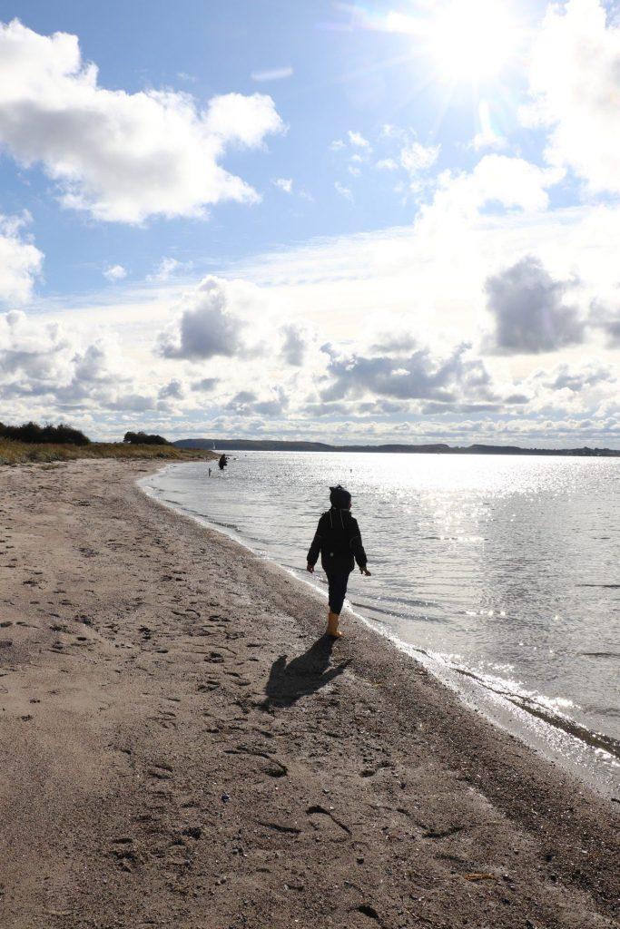 Sønderjylland Strand Ostsee
