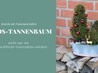 Moos-Tannenbäume: DIY für ein Adventsgesteck