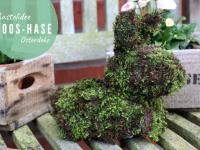 Osterdeko basteln: Moos-Hasen für drinnen und draußen