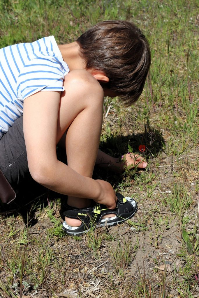 Natur entdecken mit Kindern Ideen