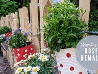 Dosen-Upcycling-Idee: Dosen mit Blumen bepflanzen